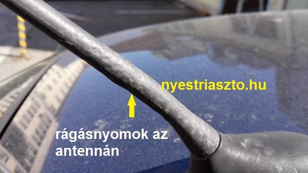 nyestriaszto.hu